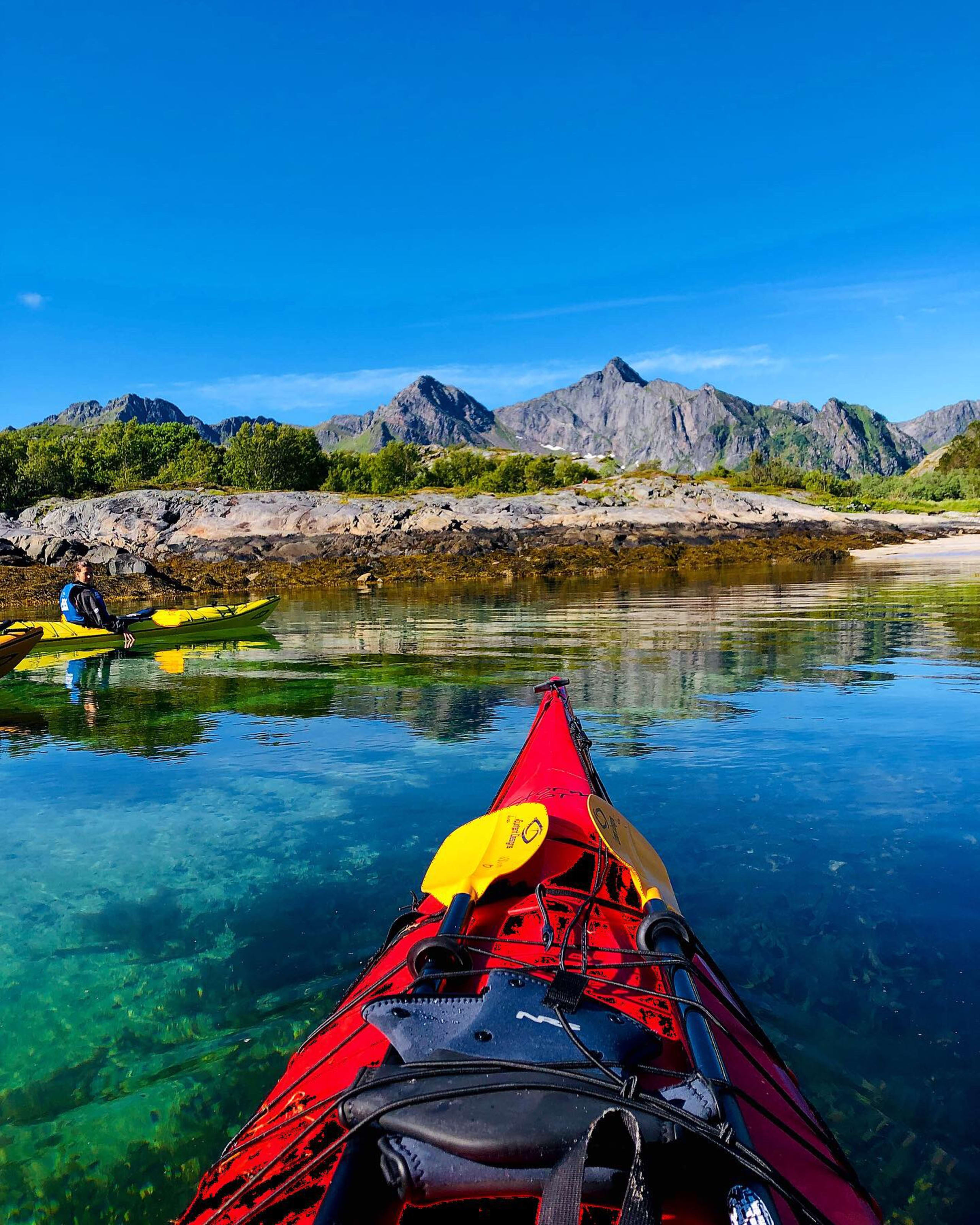 Nature kayak safari in Lofoten