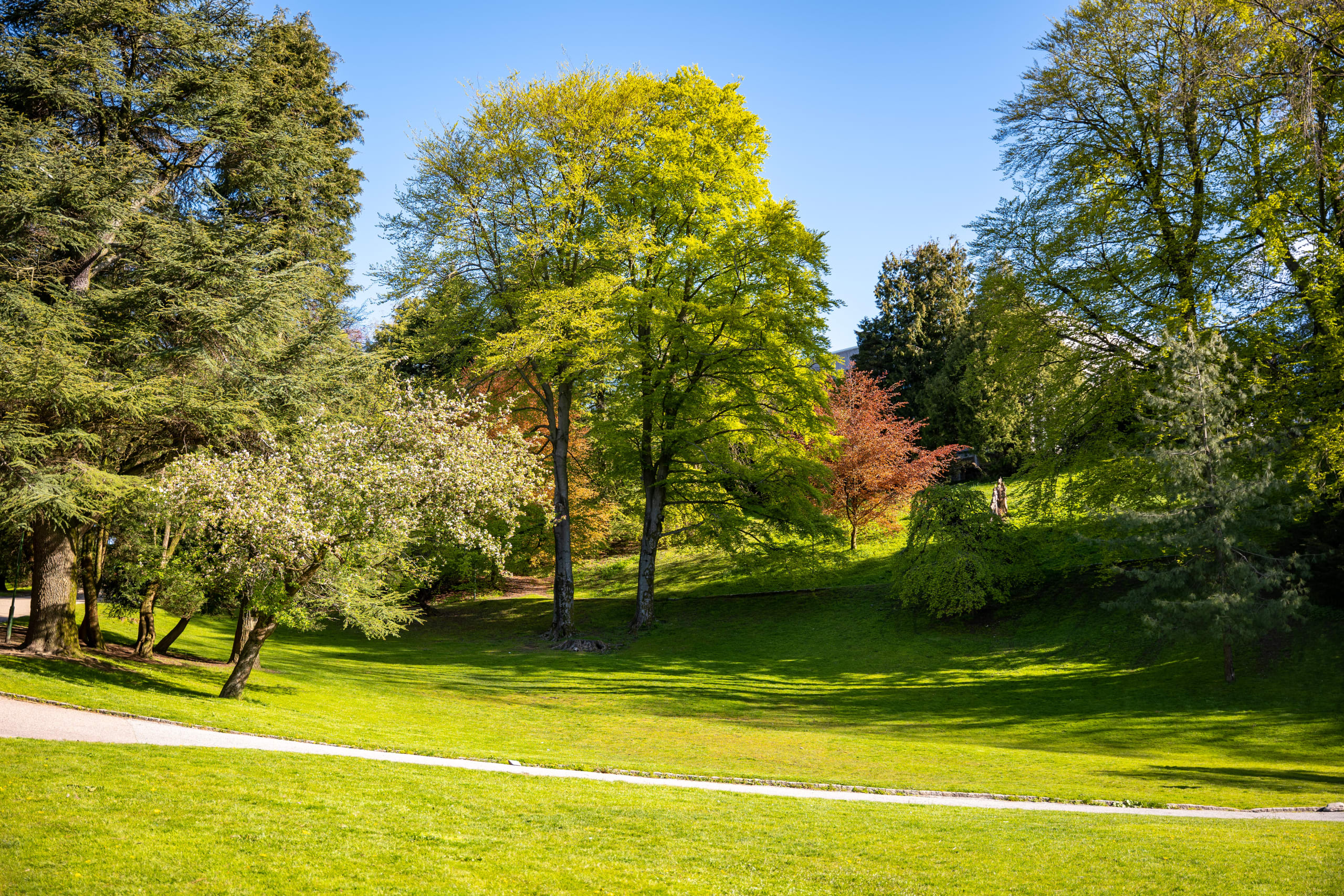 Nygaardsparken in Bergen city