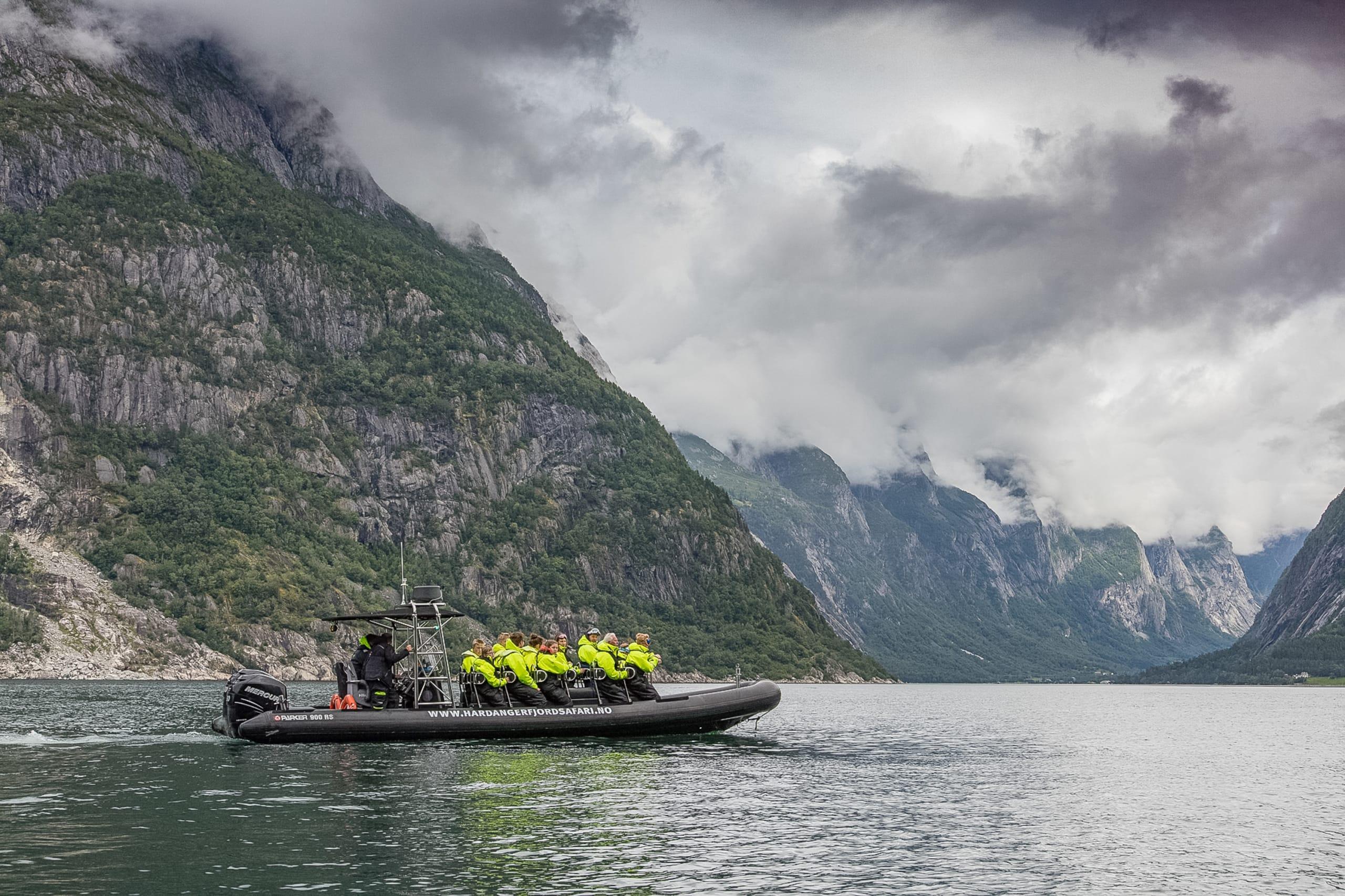 RIB safari on Hardangerfjord