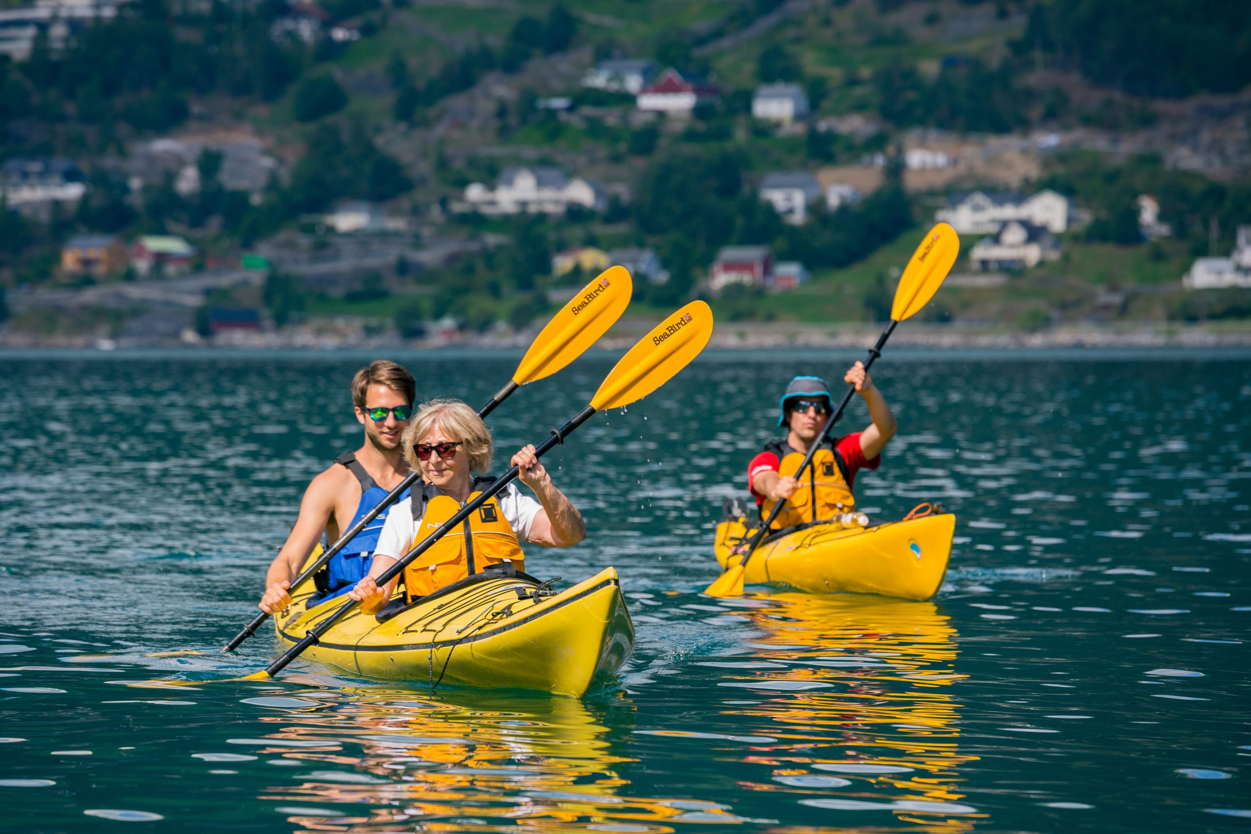 Kayaking in the Nordalsfjord and the UNESCO-listed Tafjord