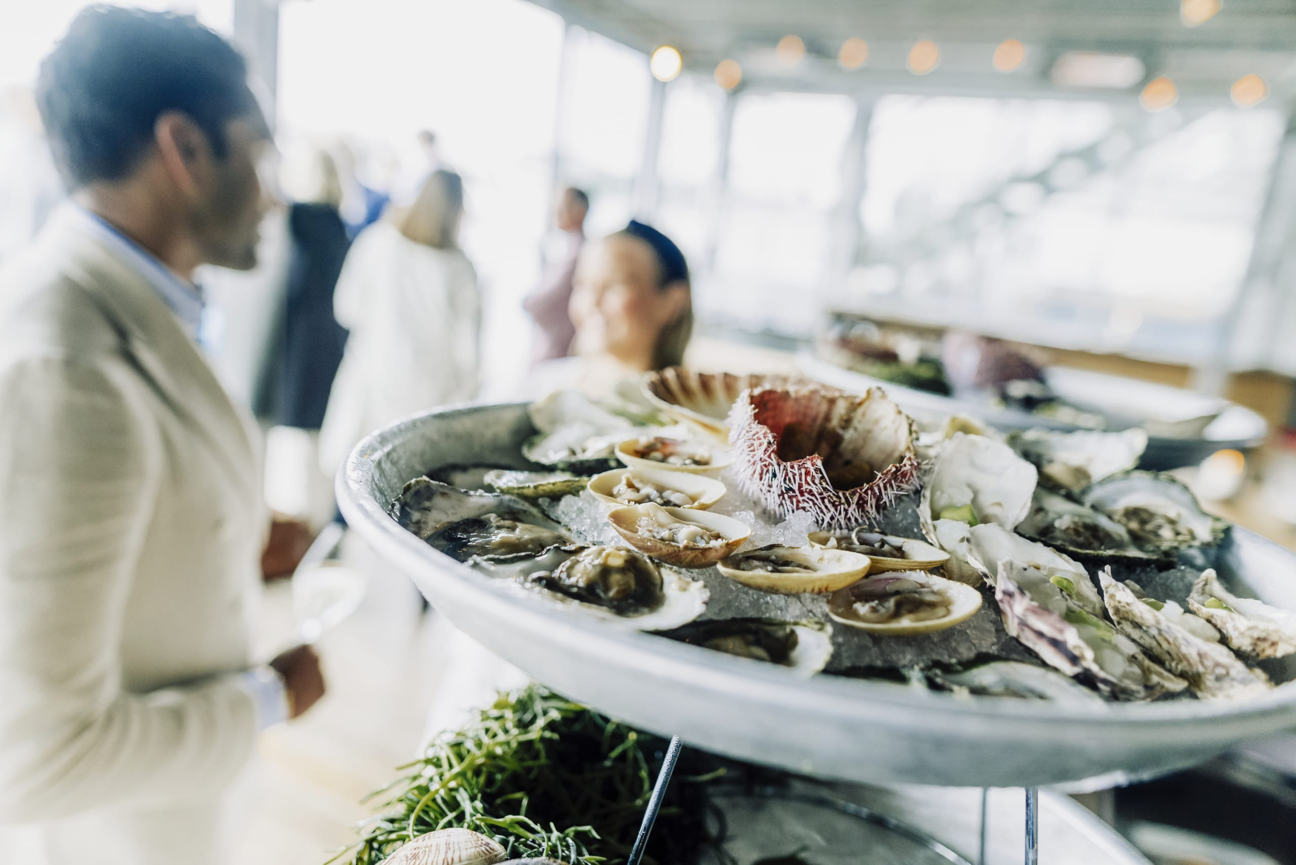 Minute fresh fish and shellfish from Sotra