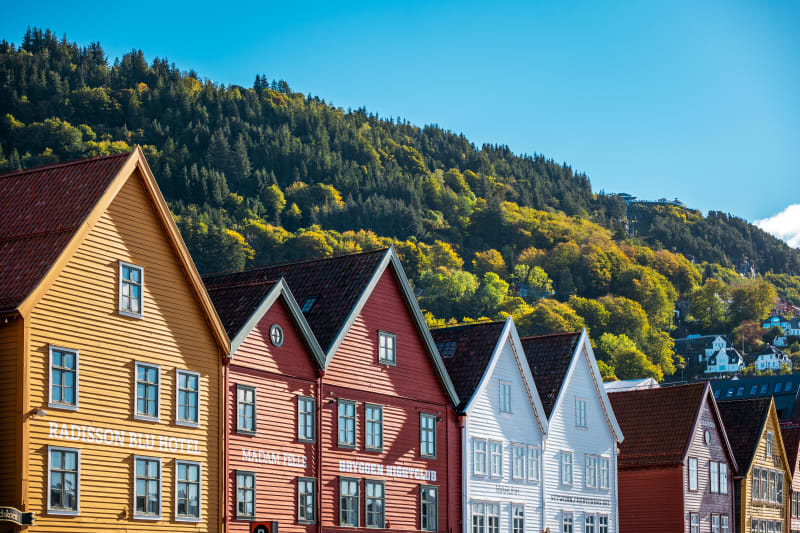 Rooftops of Bryggen Wharf