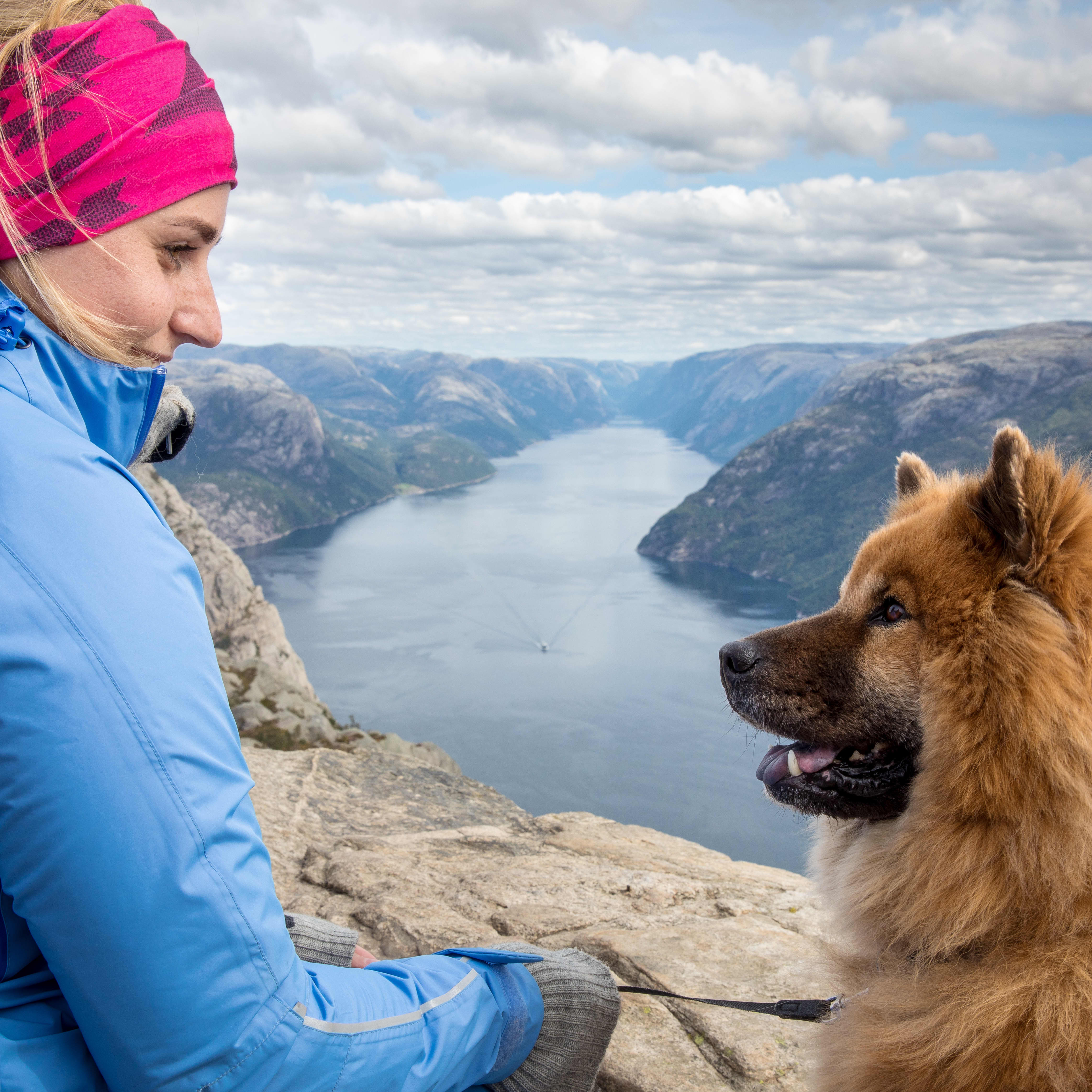 A girl with blond hair, pink head band and a blue hiking jacket having eye contact with her golden colored dog at Preikestolen. Between the two you see the Lysefjord and the rock landscape that surrounds the area.