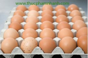 Trứng gà cây CP