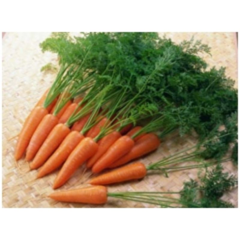 Cà rốt (Rau sạch)