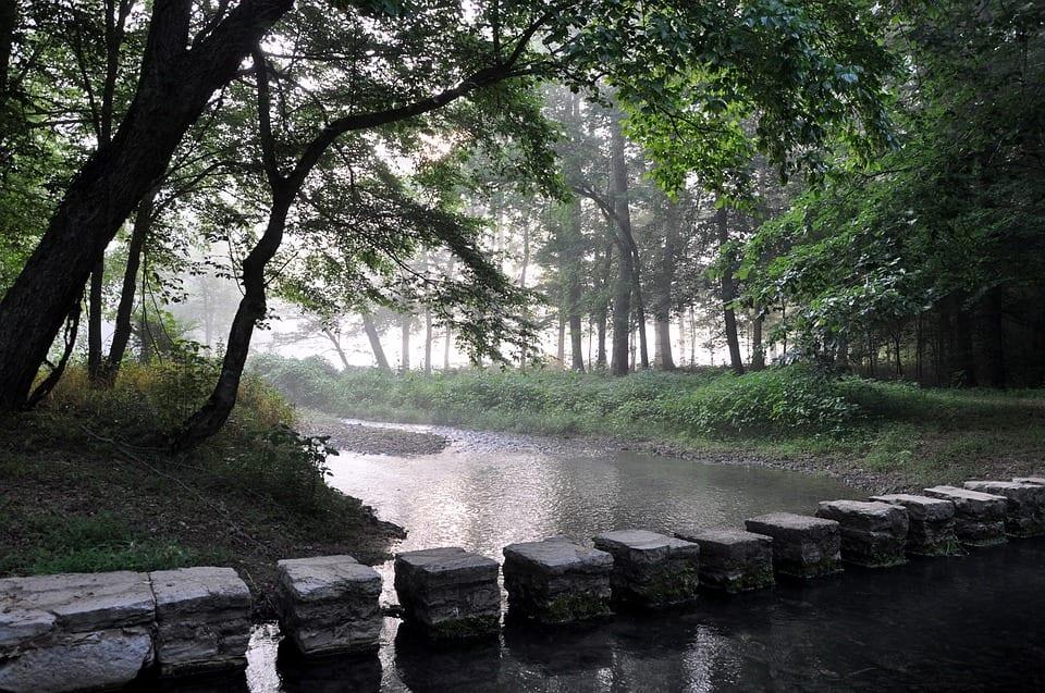 creek-1251453_960_720.jpg