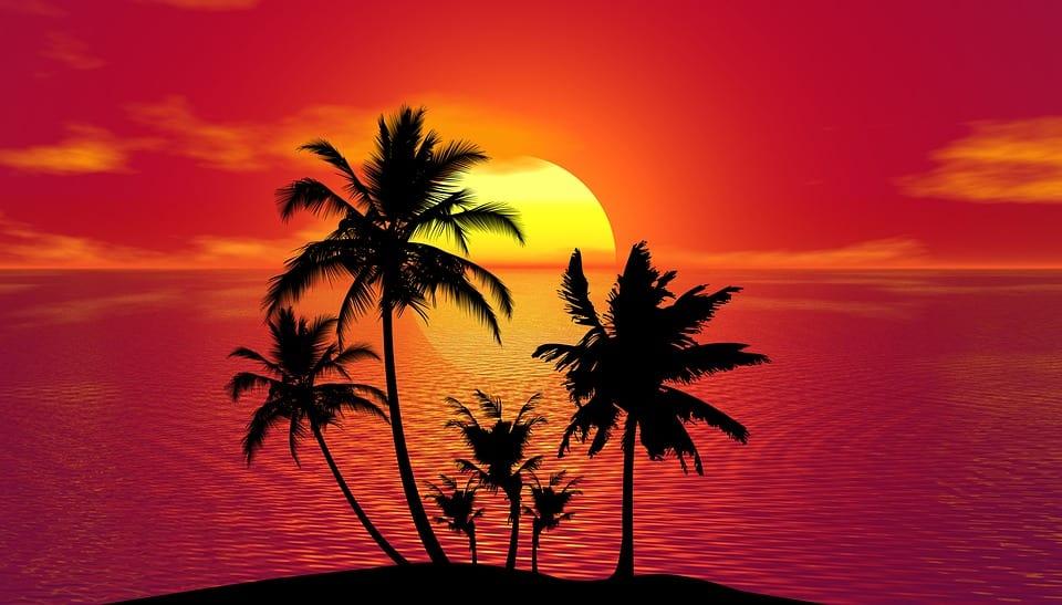 tropical-1651423_960_720.jpg