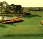 Bundled Golf Communities in Naples