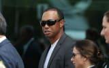 Tiger Woods bekennt sich schuldig