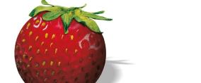 Strawberry Tour: Eine der größten Amateur-Golf-Serien Europas. (Foto: Strawberry Tour)