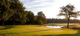 Der Schloss-Platz hat alles, was ein Weltklasse-Golfplatz bieten muss. (Foto: Hotel- und Sportresort Fleesensee)