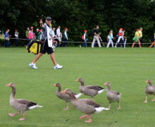 BMW International Open 2013