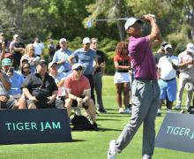 Tiger-Range