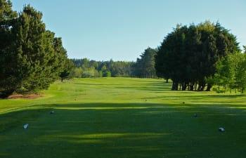 Loch 14 im Athenry Golf Club.