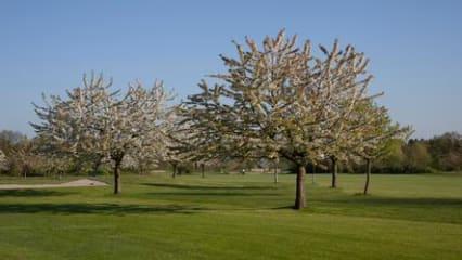 PSF Fairway Golf-Prisdorfer Sport u. Freizeitanlage
