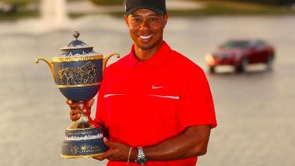 Tiger Woods gewinnt die WGC Cadillac Championship