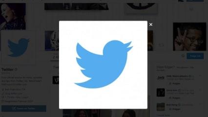 Die lustigsten Twitter-Accounts im Golf: Must-Follows für Vögelchen