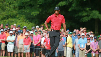 Forbes Geldrangliste: Boxer an der Spitze, Tiger Woods in Top 20