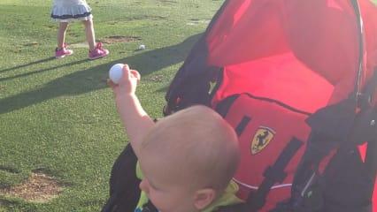 Bambinis auf dem Golfplatz