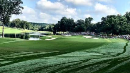PGA Championship 2017 Quail Hollow Loch 14 twitter at tjauclair