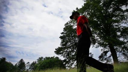 Tiger Woods Saison 2013