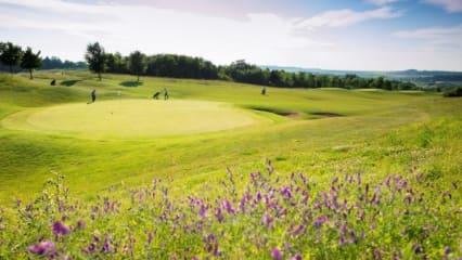 Unser Gewinnspielpartner GolfCity