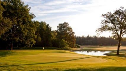 Golf & Genuss im Hotel & Sportresort Fleesensee