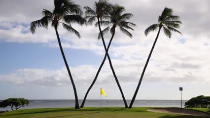 Die PGA Tour ist im Waialae CC auf Hawaii zu Gast. (Foto: Getty)