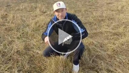 Was tun beim eingebetteten Ball? Silas Wagner klärt Sie nach den neuen Golfregeln 2019 auf. (Foto: YouTube/SilasWagner)