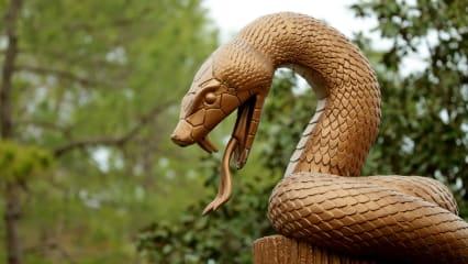 Wochenvorschau: Cejka und Jäger in der Schlangengrube