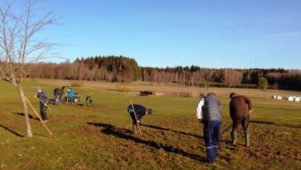 Fleißige Helfer haben im Golfclub Mudau die Wildschweinschäden ausgebessert. (Foto: Golfclub Mudau)