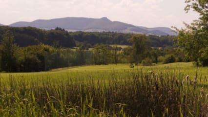 """GC Teck: Kostenloses """"Golf schnuppern"""" für Jugendliche"""