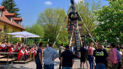 Der Maibaum steht direkt vor dem Biergarten der Gutsschänke des GC Gut Hühnerhof. (Bild: Golfpark Gut Hühnerhof)