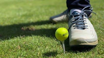 Ein ganzes Golfjahr zusammen mit Ecco - der Zwischenbericht. (Foto: Instagram: @golfblog_putterkoenig)