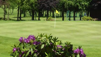 Die Mannschaft des Golf&More Duisburg ist beim Willy-Schniewind-Mannschaftspokal leider vom Pech verfolgt. (Bild: Golf&More Duisburg)