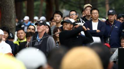 Tiger Woods führt die Geldrangliste der PGA Tour an. (Bildquelle: Getty)