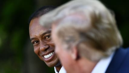 Auch Tiger und Trump schaffen es in den Rückblick der Back Nine. (Bildquelle: Getty)