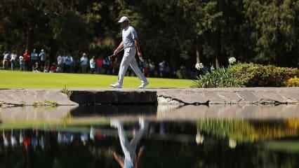 Die verrücktesten Statistiken von Golflegende Tiger Woods