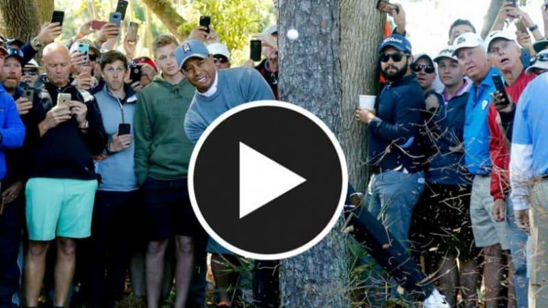 Tiger Woods mit einer formidablen Rettungstat