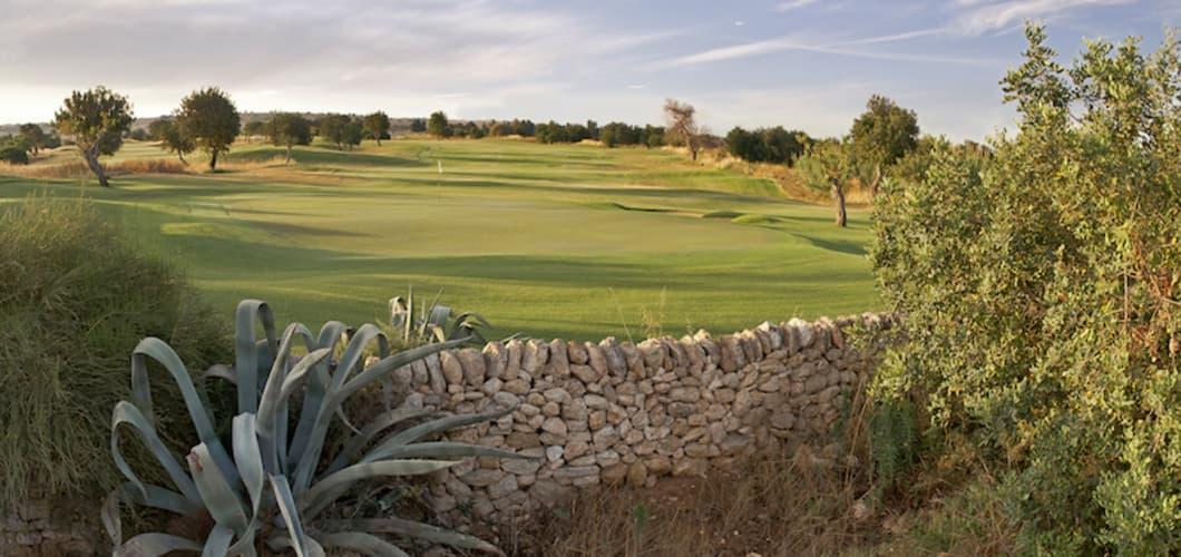 golf_8.jpg