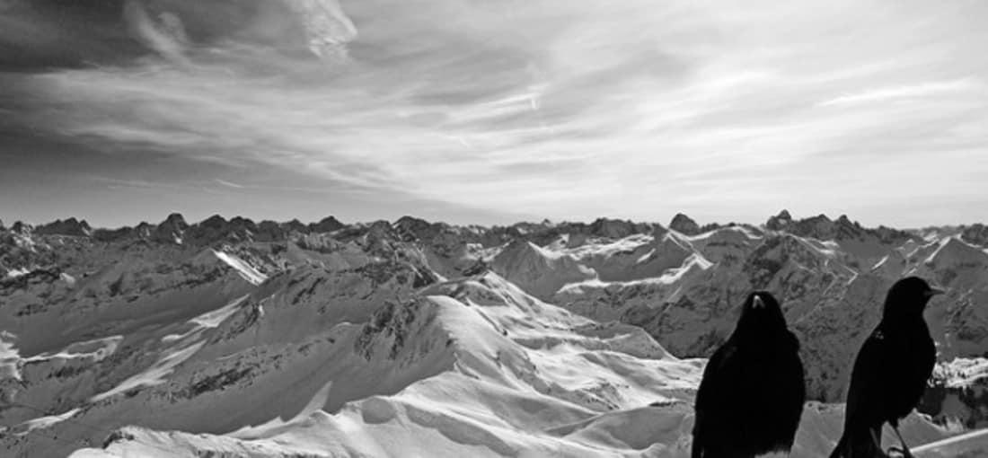 <h2>Nebelhorn</h2> Und warum nicht schön gesellig die Winterlandschaft genießen (Foto: flickr).