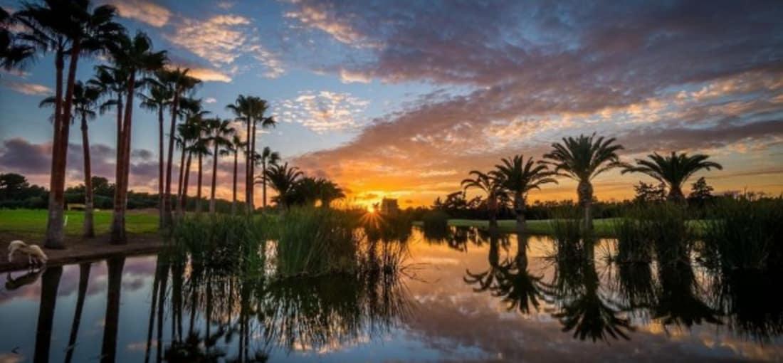 Auf Mallorca befinden sich mehr als 20 Golfplätze. Alle Golfclubs bieten ihren Mitgliedern und Gästen einen ausgesprochen guten Pflegezustand und einen sehr guten Service. Aus diesem Grund zählt Mallorca bereits seit Jahren zu den beliebtesten Golf-Destinationen in Europa. Der T Golf & Country Club Poniente ist eine große Herausforderung für alle Spieler. Während des Spiels kann man zwischen Pinien und Olivenbäumen einen herrlichen Blick auf die Berge der Sierra de Tramuntana genießen. ( Foto: T Golf & Country Club Poniente)