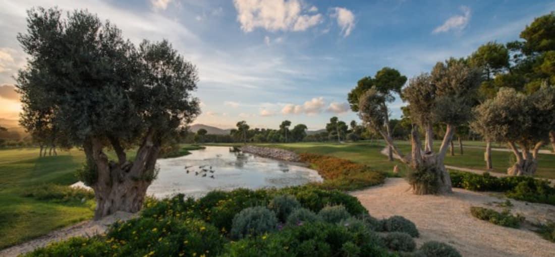Der Club de Golf Son Servera ist der zweitälteste Golfclub auf Mallorca. Mit traumhaftem Blick auf die Bucht von Cala Millor genießen die Golfspieler ihren Besuch in vollen Zügen. (Foto: Club de Golf Son Servera)