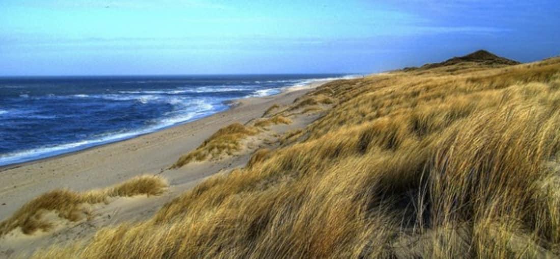 <h2>Dünenlandschaften</h2> Die Dünenlandschaften auf Sylt bieten auf der einen Seite Schutz und laden auf der anderen Seite zu schönen Spaziergängen ein (Foto: flickr).