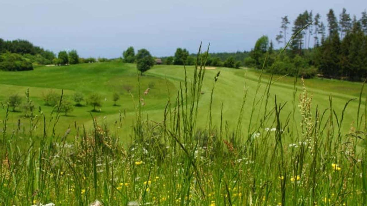 Golfanlage Gerhelm: Fairway Bahn 8. (Foto: 500% Golf)