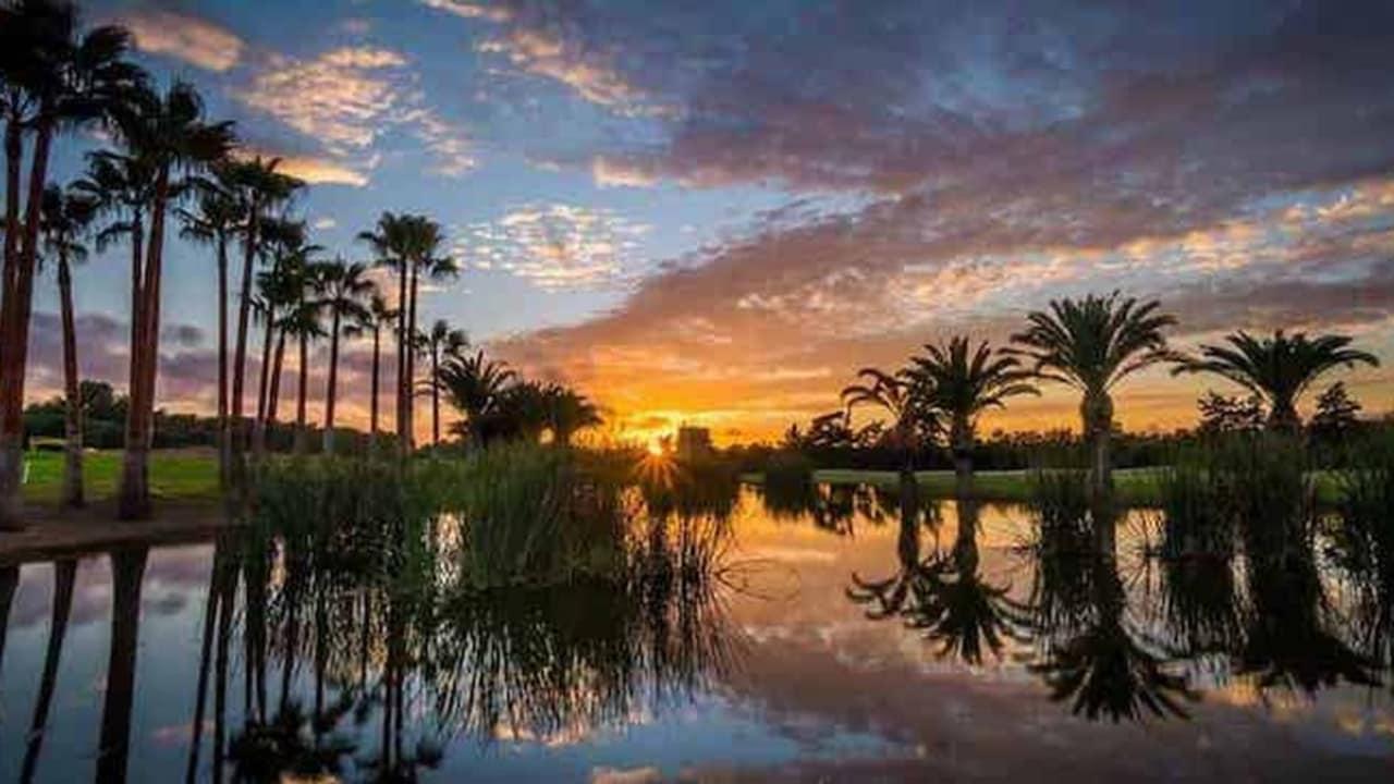 Plätze wie der renommierte Poniente Golf sind ebenfalls nicht weiter entfernt als 30 Minuten. (Foto: Poniente)