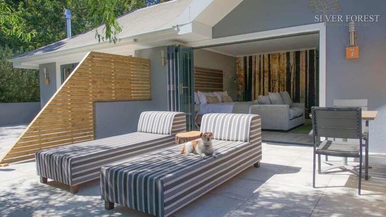 Die Luxury Forest Suite verfügt über einen eigenen Hof.