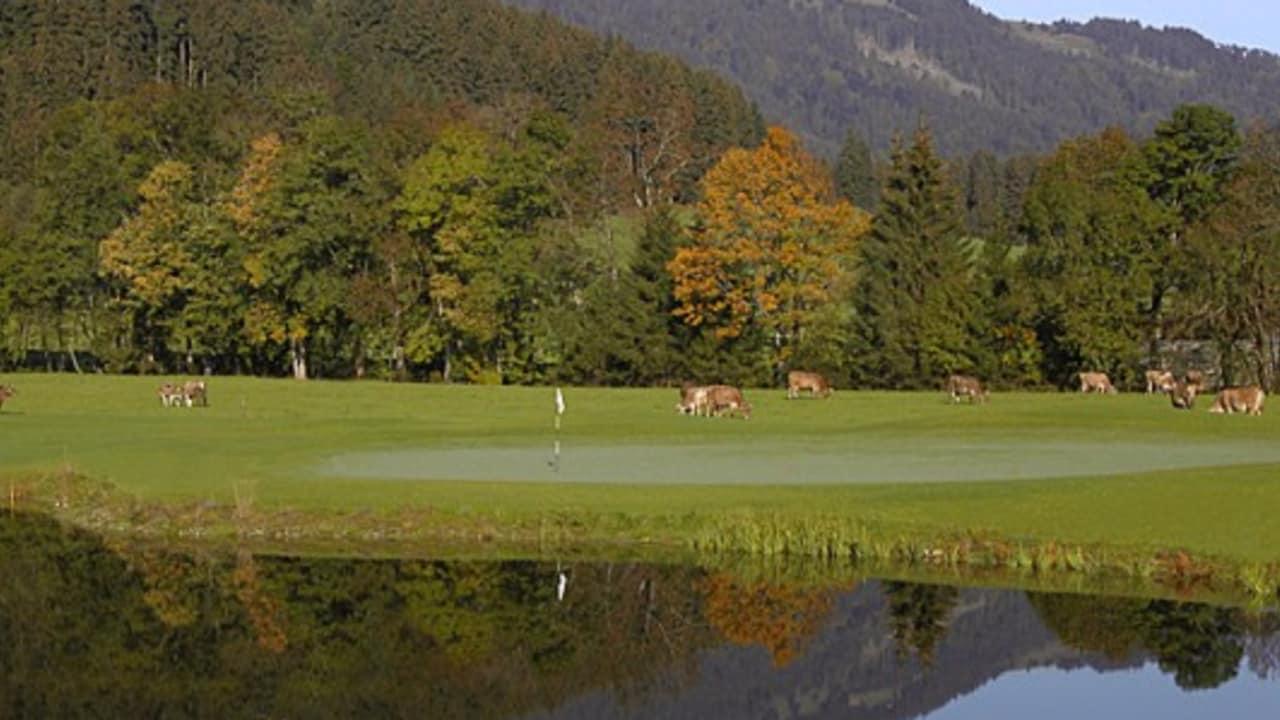 <b>Golfclub Oberallgäu</b>