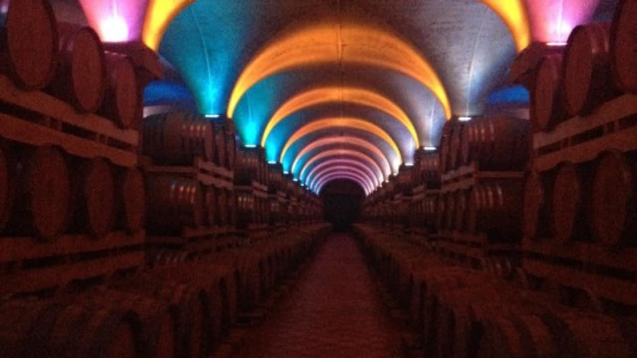 Im Keller der Destillerie Berta lagern Millionen Liter Grappa. Ob die Musik und das wechselnde Licht, den Geschmack verbessern, ist nicht bewiesen, doch schön ist es dennoch. (Foto: Weihrauch)