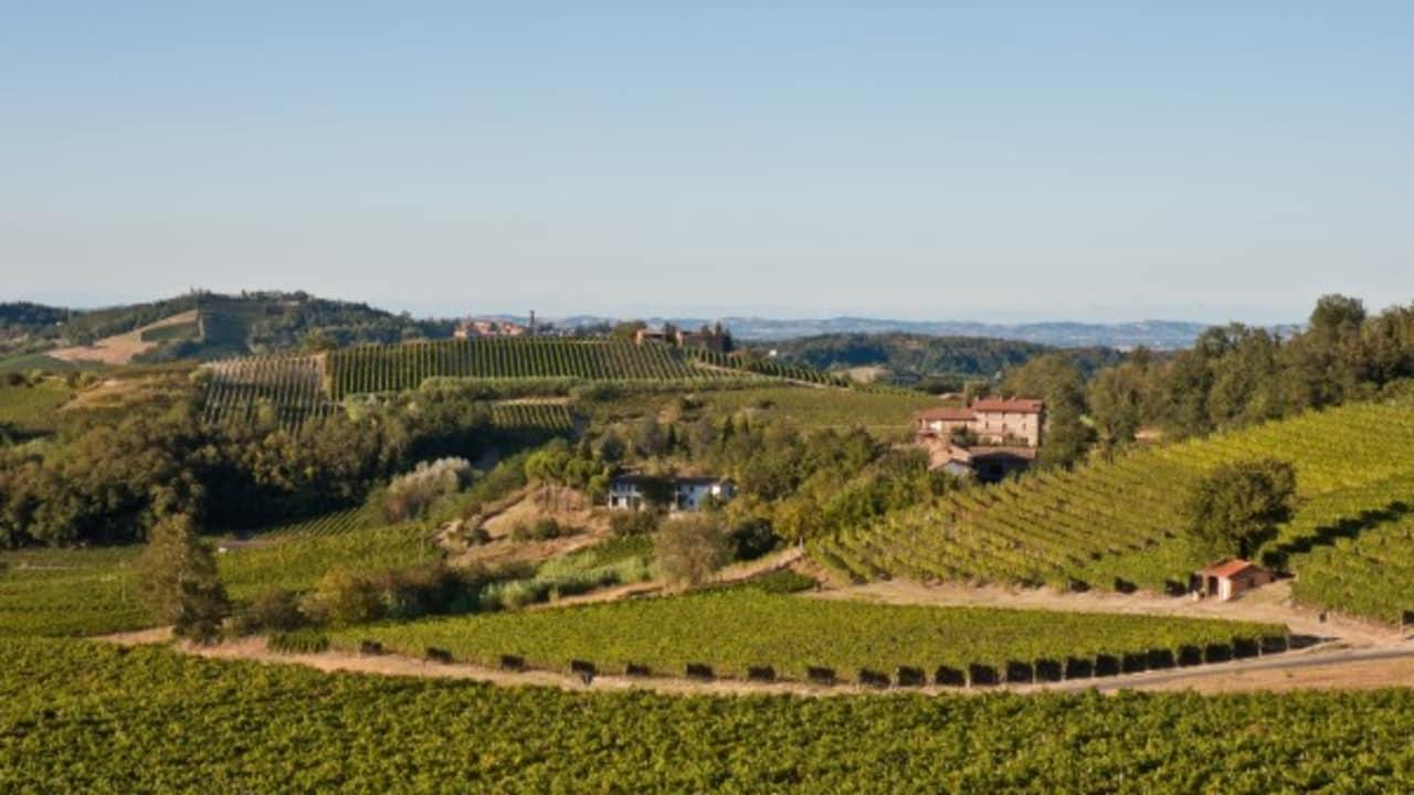 An allen Ecken und Enden gibt es im Piemont Weingüter und Keltereien. Viele von ihnen bieten Führungen an. (Foto: Weihrauch)